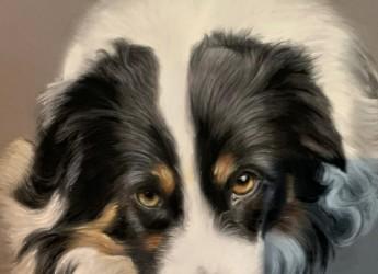 Dog portrait by Marianne Bindemanis