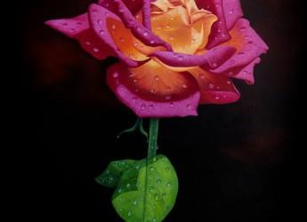 .... by Jahangir